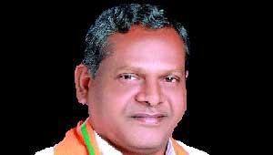 रामसेवक पैकरा-गृहमंत्री