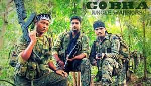 सीआरपीएफ-कोबरा कमांडो