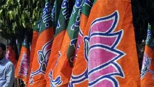 भाजपा का झंडा